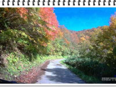 部子山と大野池田林道とR416